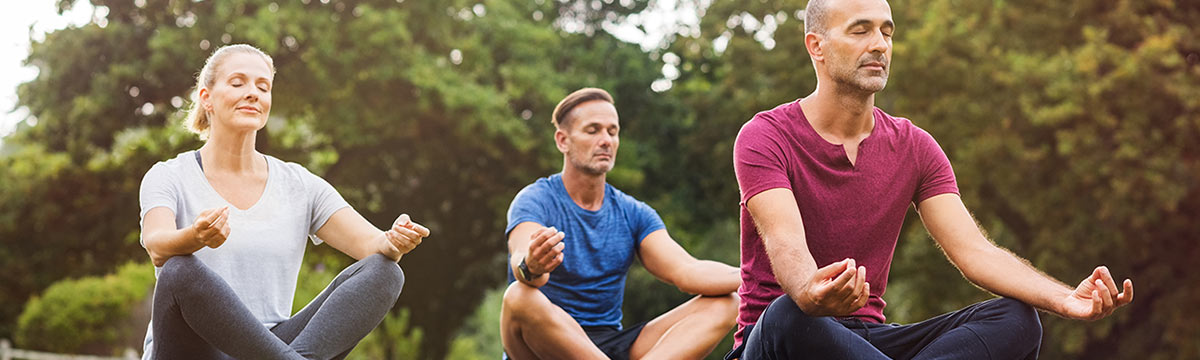 adults meditating in park setting stock photo